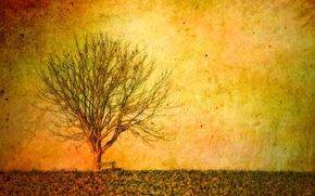 Картинка пейзаж, стиль, фон, дерево