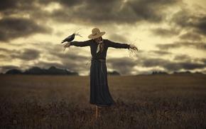 Картинка девушка, птица, ситуация, пугало