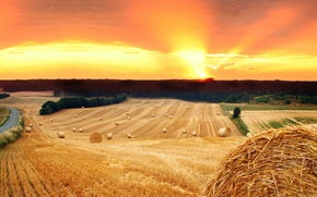 Картинка дорога, поле, солнце, деревья, закат, природа, стог, сено, солома