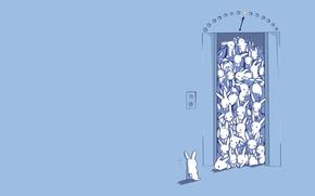 Картинка рисунок, удивление, лифт, кролики, зайцы, много