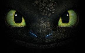 Картинка глаза, фентези, дракон, мультфильм, текстура, беззубик, ночная фурия