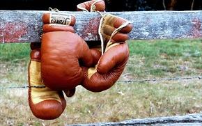 Картинка спорт, забор, бокс, боксерские перчатки