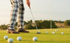 Обои golfer, golf clubs, golf