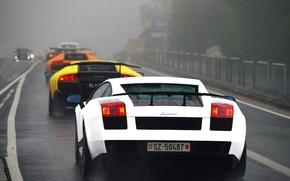Картинка белый, оранжевый, желтый, туман, дождь, черный, Lamborghini, шоссе, white, gallardo, black, rain, diablo, yellow, murcielago, …