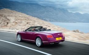 Картинка Bentley, Continental, кабриолет, GTC