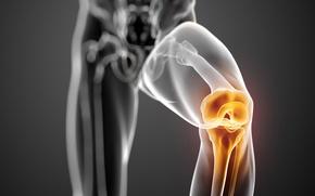 Картинка pain, knee, joint