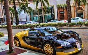 Картинка авто, машины, Бугатти, Bugatti, спорткар, люкс