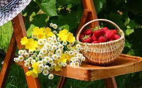 Картинка цветы, ягоды, шляпа, сад, клубника, двор, стул, корзинка