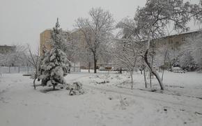 Картинка zima, Uzbekistan, sneg, Navai, devyatka, kizilkum