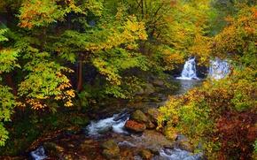 Картинка камни, waterfal, forest, природа, водопад, деревья, fall, stones, autumn, colors, trees, Nature, осень, лес