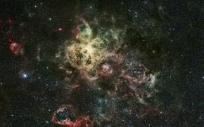 Обои NGC 2070, эмиссионная туманность, Тарантул, Золотая Рыба, созвездие