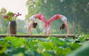 Обои поза, девушки, гимнастика, йога, азиатки
