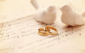Картинка пара, Обручальные кольца, свадьба, голубки