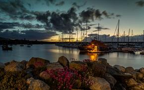 Картинка море, небо, облака, закат, цветы, камни, берег, бухта, яхты, фонарь, Великобритания, Holyhead