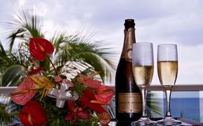 Картинка цветы, фон, бутылка, букет, размытость, пробка, шампанское, фужеры, Луи Рёдерер, Louis Roederer