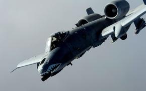 Картинка штурмовик, американский, одноместный, бронированный, Рипаблик, двухдвигательный, Fairchild-Republic A-10 Thunderbolt II, Фэйрчайлд, A-10 «Тандерболт» II