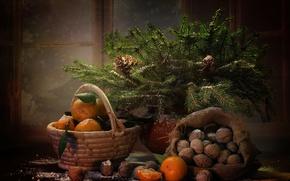 Картинка зима, ветки, корзина, новый год, ель, окно, ёлка, фрукты, орехи, натюрморт, мешок, шишки, мандарины
