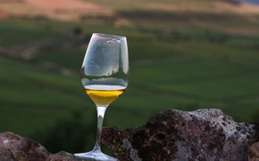 Картинка glass, wine, rocks, valley, vineyards, white wine