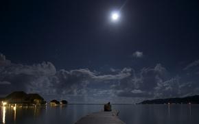 Картинка ночь, океан, луна, романтика, двое