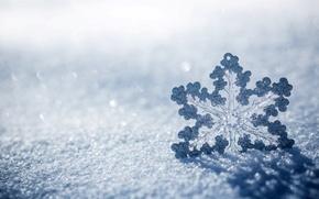 Картинка лед, зима, макро, снег, природа, снежинка