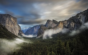Картинка лес, пейзаж, горы