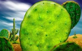 Обои кактус, пустыня, зеленый