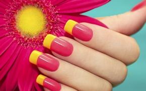 Картинка цветок, лето, настроение, рука, ярко, ногти, маникюр