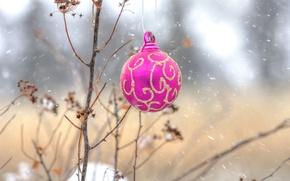 Картинка природа, новый год, шар, рождество, украшение, деревце