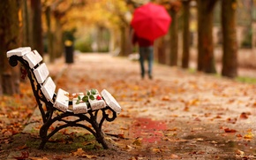 Картинка осень, цветок, парк, роза, человек, зонт, скамья, goodbye, уход, Adios
