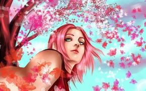 Обои девушка, дерево, сакура, арт, naruto, розовые волосы, haruno sakura, hisokakakashi