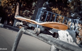 Картинка Скейт, Райдер, Скейтборд, Skate, riders