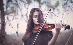 Картинка девушка, скрипка, игра