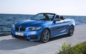 Картинка голубой, побережье, BMW, convertible, M235i, F23