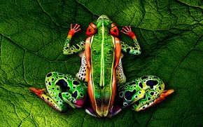 Картинка bodypainting, green leaf, naked women, Frog