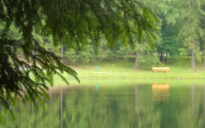 Обои скамейка, природа, озеро, widescreen, обои, ель, wallpaper, широкоформатные, background, обои на рабочий стол, полноэкранные, HD ...