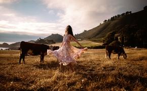 Картинка Raluca, Jesse Herzog, девушка, танец, коровы