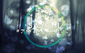 Картинка forest, cover, album, Saychi, beat making