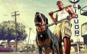 Картинка мужик, пес, бита, ротвейлер, Grand Theft Auto V, лос сантос, Франклин, чоп