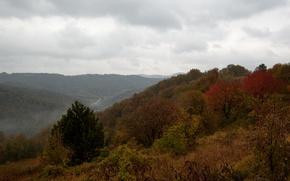 Картинка горы, туман, холмы, Осень, autumn, mountains, fog, fall