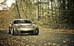 Обои дорога, листва, 350z, Nissan, осень