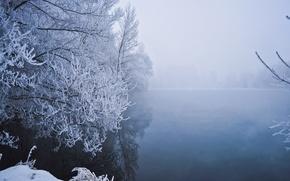 Картинка зима, снег, деревья, туман, озеро, мороз, Winter, trees, lake, snow, fog, frost