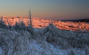 Картинка зима, снег, горы, природа, солнечный свет, contrasts with reflected pink sunlight on the mountain ridge, ...