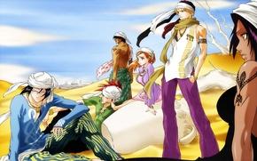 Картинка Bleach, Ichigo Kurosaki, Shinigami, Orihime Inoue, abarai renji, Yasutora Sado, Renji Abarai, Yoruichi Shihouin, Uryuu …