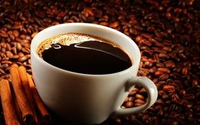 Обои кофе, чашка, корица, кофейные зерна, coffee, Cup, cinnamon, coffee beans