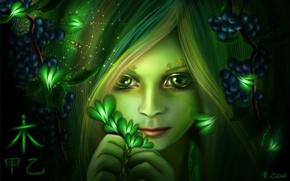 Картинка глаза, взгляд, девушка, бабочки, лицо, ягоды, паутина, паук, арт, иероглиф, lilok-lilok