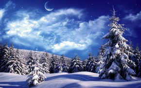 Обои облака, снег, елки, зима