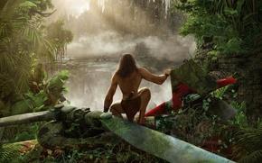 Картинка лес, деревья, пейзаж, мультфильм, джунгли, animation, панорама, forest, кусты, trees, landscape, jungle, panorama, cartoon, анимация, …