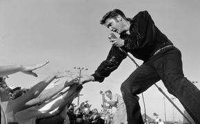 Картинка сцена, концерт, микрофон, публика, elvis presley, rock n roll, элвис
