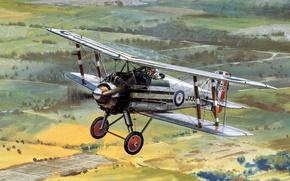 Картинка wheels, aircraft, biplane, Gloster Grebe, engine