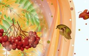 Картинка осень, листья, ягоды, коллаж, вектор